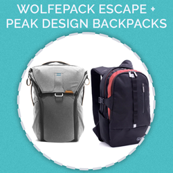 Prize for day 16 - Wolfepack Backpacks